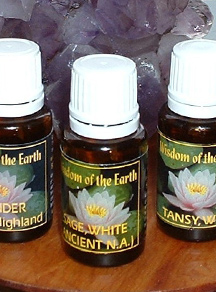 wisdom-essential-oils