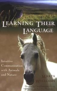 marta book cover